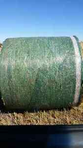 GREEN FEED BALES FOR SALE