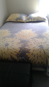 Double Quilt with shams, excellent condition, paid  $70 .