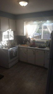 Clean quiet room for rent June 15 aval.