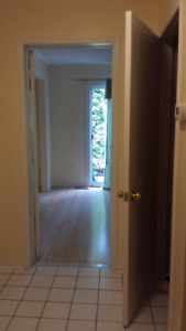$900 one bedroom Basement for rent in mississauga