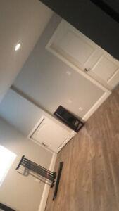 2 bedroom 1 bathroom basement suite