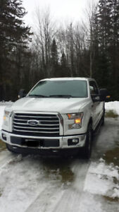 2016 Ford F-150 in immaculate condition