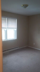 .SPACIOUS TWO BEDROOM AVAILABLE IN KITCHENER. Kitchener / Waterloo Kitchener Area image 3