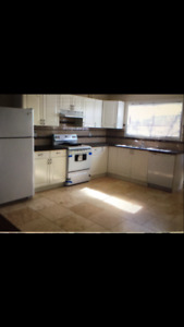 $1200/ 2BR - Lower Suite  (930 sq. ft) For Rent  Clearbrook Road