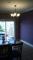 experience plaster and painter avail at $120/$160 per room