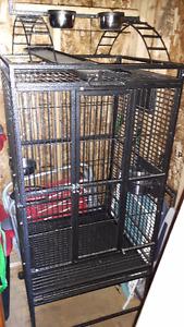 Cage pour perroquet avec accessoires à vendre