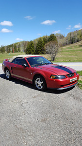 2002 Ford Mustang convertible v6 Coupe (2 door)