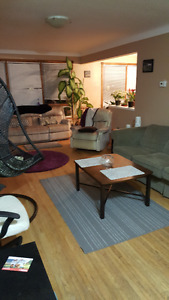 1 room for rent - Available May 1st - Close to Brock!