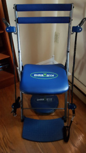 Gym chair &  twister great for seniors with mobility issues
