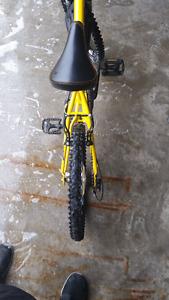 Like new youth Bike
