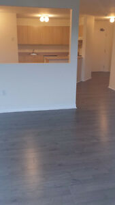 laminate 2 bedroom Avail Feb 1st