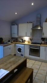 1 Double room for rent in Redland