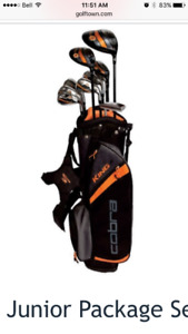 ISO -junior golf clubs left 12/13 year old male