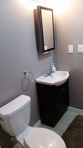 Basement Room for Rent - Students/Professionals Kitchener / Waterloo Kitchener Area image 4