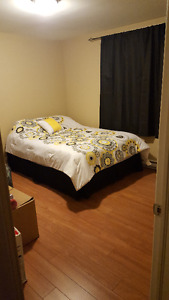 2 bedroom basement apartment in Paradise NL