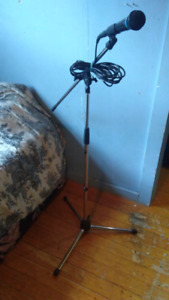 Mic and mic stand