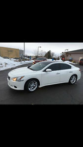 2009 Nissan Maxima SV Premium | Panoramic Sunroof, Leather