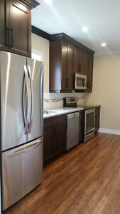 3 Bedroom apartment in down town Kitchener