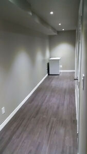 Basement Room for Rent - Students/Professionals Kitchener / Waterloo Kitchener Area image 6