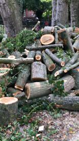 Free tree logs