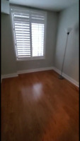Downtown sublet for female roommate, 4-6 months
