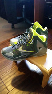 Lebrons basketball shoes