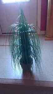 2 Artificial Plants