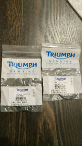Triumph cush drive wheel seal