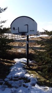 Basketball assembly