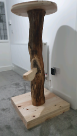 Cat Tree - trunk made from real Ash log
