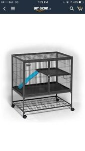 LOOKING FOR a large rat cage