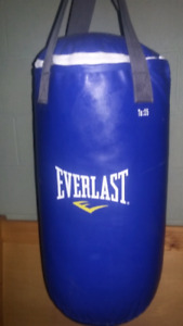 Everlast punching bag and gloves $75