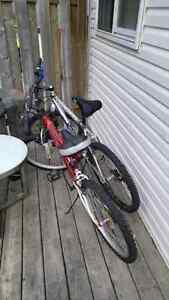 2 Mountain bikes For Sale