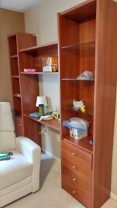 Neoset wall unit with TV stand