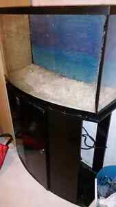 46g bowfront aquarium with stand