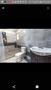 GORGEOUS BRAND NEW one bedroom basement suite