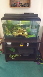 Aquarium/stand/tons of extras