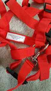 Child safety harness for toddler age 3 to 9 Cambridge Kitchener Area image 2