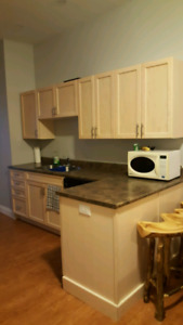 Large 1 Bedroom Apartment available for September 1