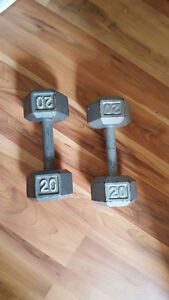 REDUCED FOR QUICK SALE !  Weights !