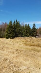 1 Acre To Build Your Dream Home