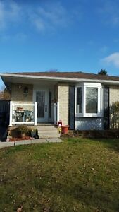 3 Bedroom Bunglow House bramalea & Bovaird in Brampton