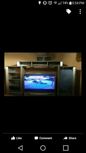 "51"" rear pronection tv and entertainment centre"