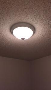 Ceiling flush-mount light