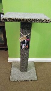 Jumbo Kitty Scratching Post w Perch/Bed