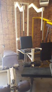 Gym Equipment (various)