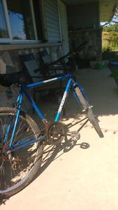 Skyline bike