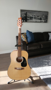 Brand New Guitar with steel stand and cover