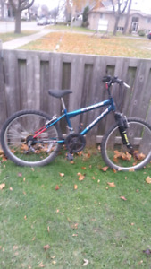 CCM TRIUMPH SUPERCYCLE NORTHWOODS OPUS NEXT REFURBISHED