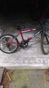 Good little kids 5 speed bicycle for cheap 20$